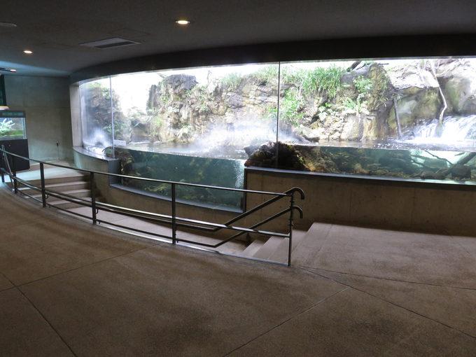 葛西臨海水族園の詳細・アクセス情報とお得に入園【まとめ】