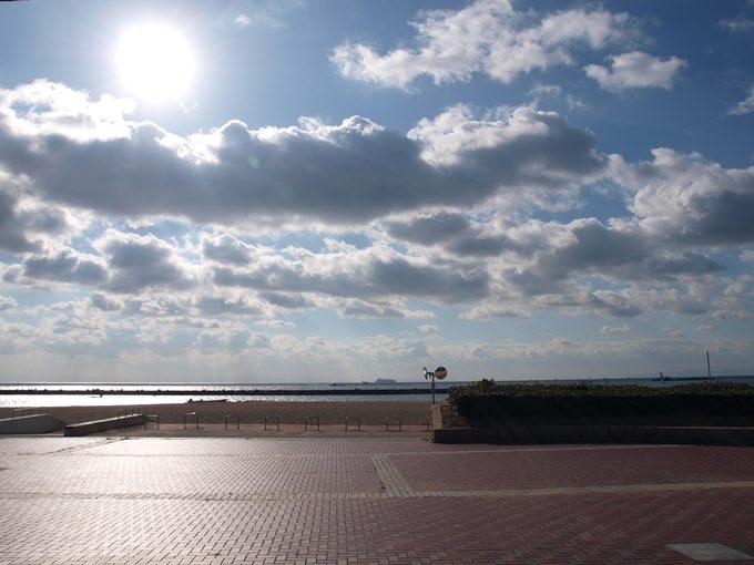 「須磨水族園のイルカショー」アクセス・料金・営業時間など