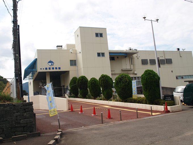 行くと思わず頭が良くなってしまう5つの水族館和歌山1