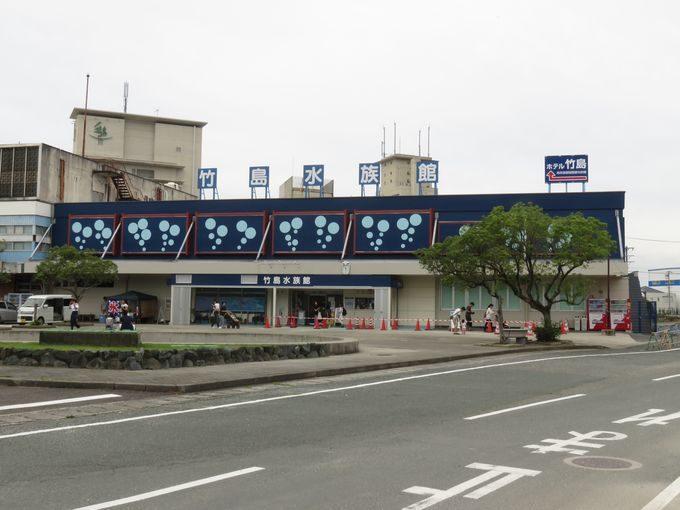 夏休みに行くべき竹島水族館!青春18切符のお得な使い方とグルメおすすめ5選!2
