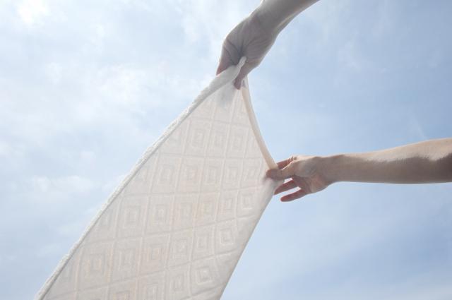 洗濯後にダニ退治できる簡単な4つの方法とは!