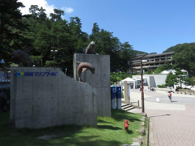 【城崎観光】水族館で魚釣り!?城崎マリンワールドの面白すぎる5つの魅力!!