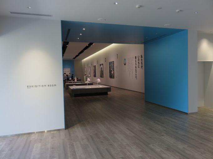 名勝を臨む水族館内の新名所、日和山海岸ミュージアム!!2