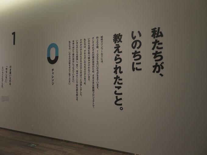 名勝を臨む水族館内の新名所、日和山海岸ミュージアム!!4
