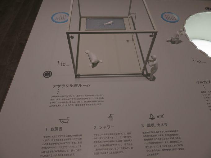 名勝を臨む水族館内の新名所、日和山海岸ミュージアム!!6